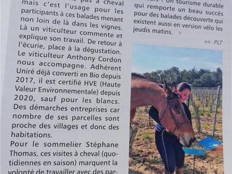 Oenotourisme - Article paru dans le magazine Ré à la Hune