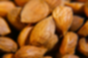 noyaux abricot.png