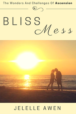 rsz_1bliss_mess_book_cover_6x9.png