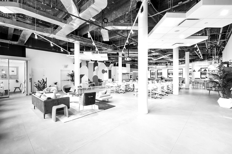Urban Modern Interior Design  _edited.jpg