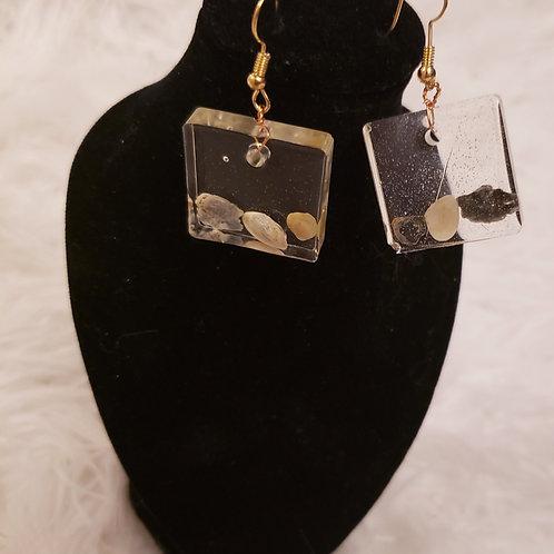 Box Shell Earrings