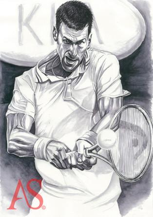 Novak Djokovic by Alex Stutchbury