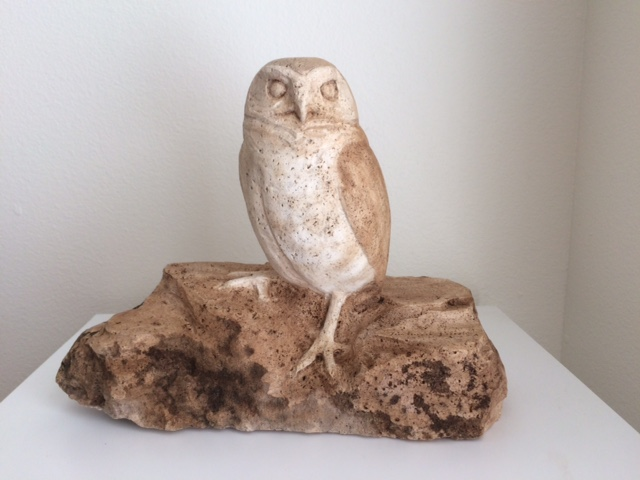 Burrowing Owl in Travertine