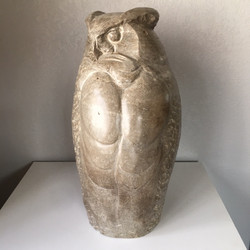 Great Horned Owl in Limestone