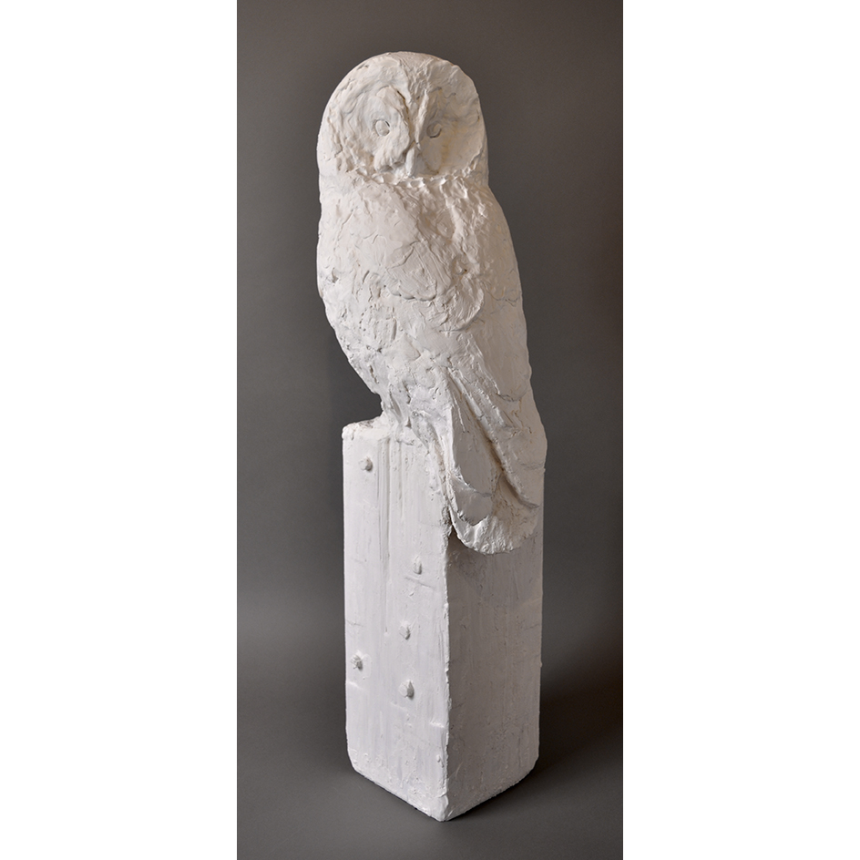 GREAT GRAY OWL IN PLASTER WORK IN PROGRESS FOR BRONZE