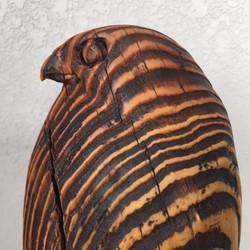 Cooper's Hawk in distressed wood.
