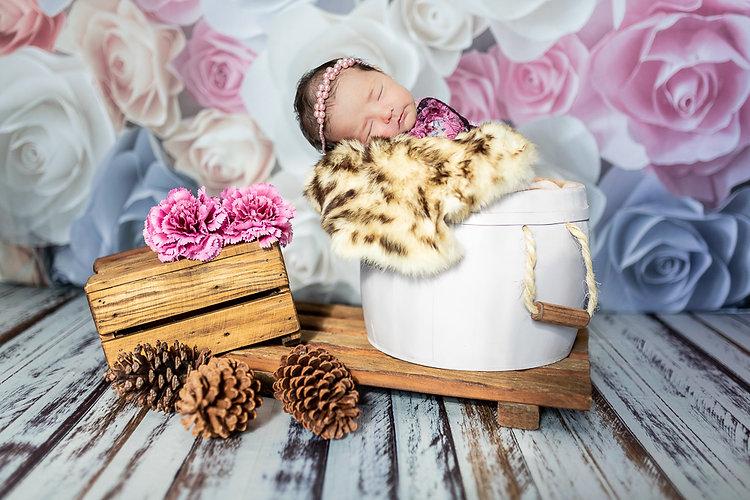 NEWBORN BABY GIRL • Ludimila Freitas-2.jpg