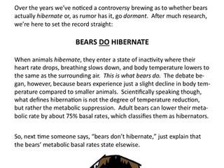 Hibernate vs. Dormant