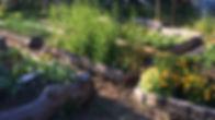 IMG_0308_edited.jpg