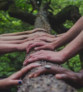 teamwork-image-shane-rounce_500px.jpg