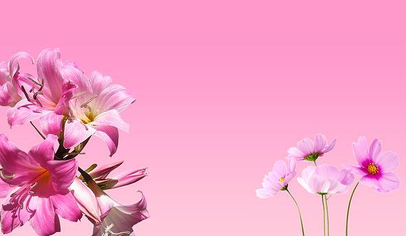 beautiful-bloom-blooming-1266130.jpg
