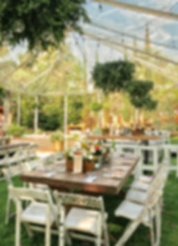 wedding planner queretaro