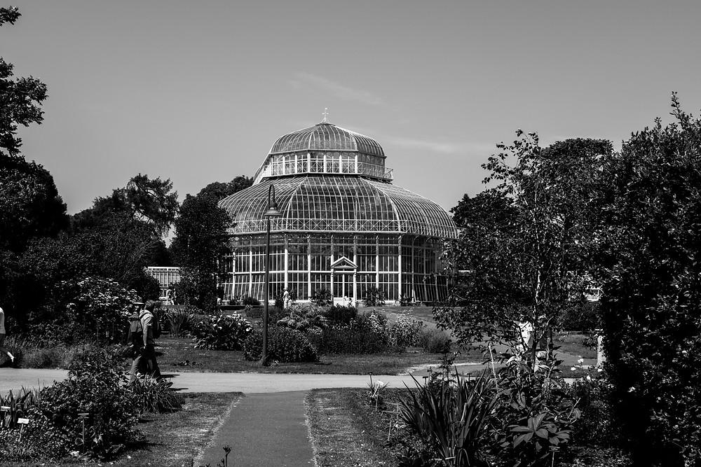 lady mac lifestyle botanic gardens dublin ireland
