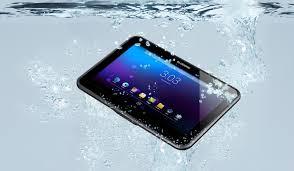 बीहड़ Android कंप्यूटर 2.jpg