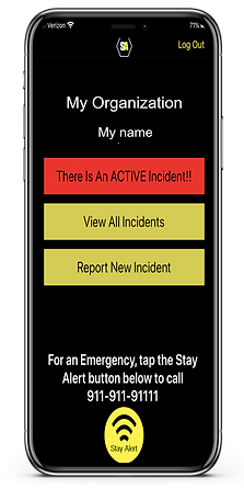 Stay Alert phone for website.png