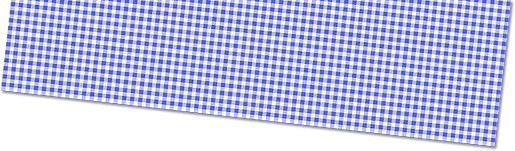 Blue Gingham.png