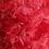 Thumbnail: Red Koolzie