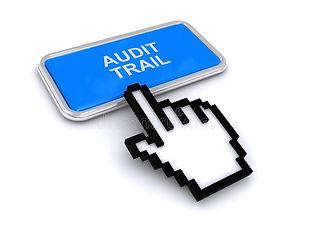 audit trail icon.jpg