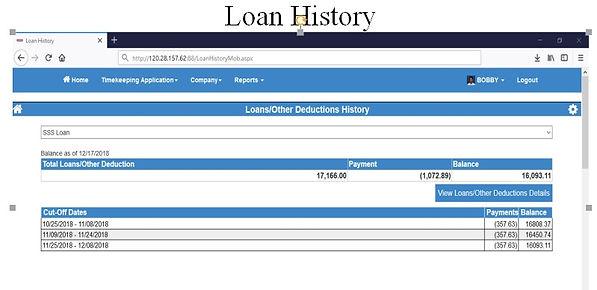 Loan History.jpg