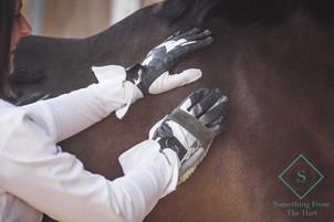 X-Training Gloves