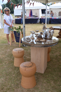Cowdray Park Polo Club King Power Gold Cup