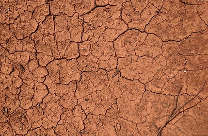outback red dirt bone dry and cracked.JP
