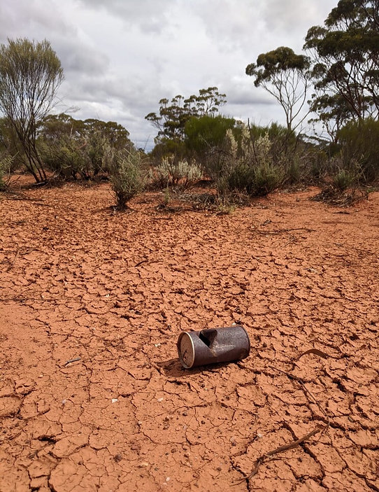 remote outback scene with rusted can in