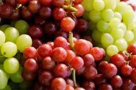 Everyone loves seedless grapes.jpg