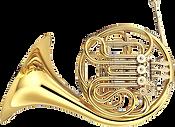 A beautiful horn