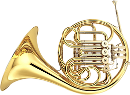 A beautiful horn