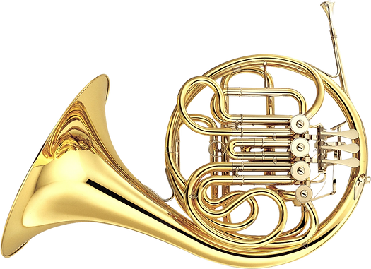 A beautiful french horn
