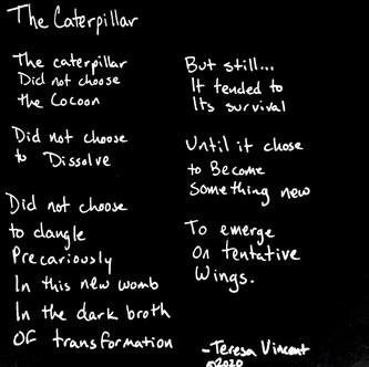 """The Catepillar"""