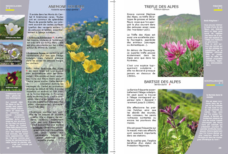 Aperçu Page 19-20