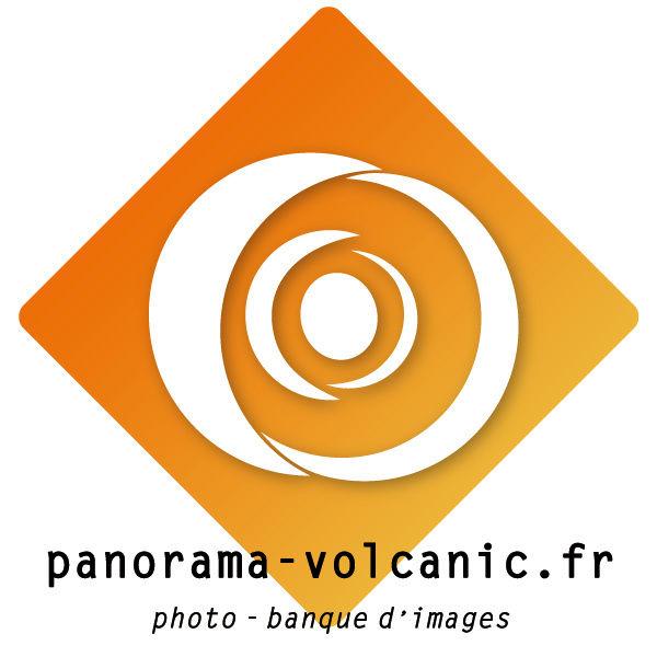 PVolc logo 2016.jpg