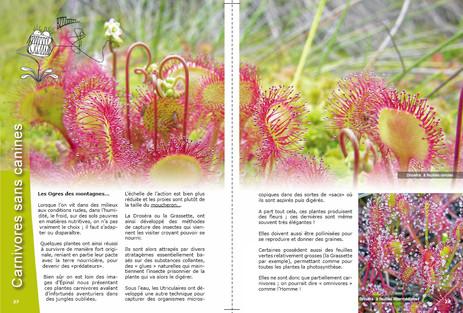 Aperçu Page 27-28