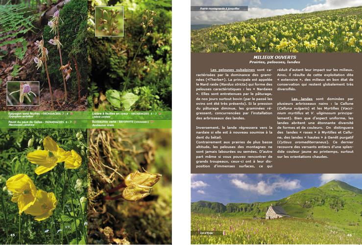 Aperçu Page 45-46