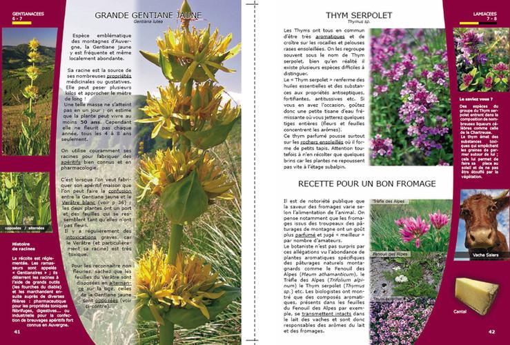 Aperçu Page 41-42