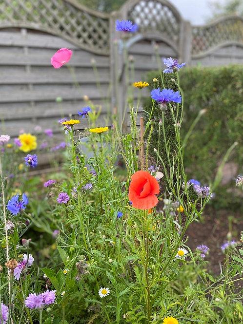 'sow your own' - wild flower bucket