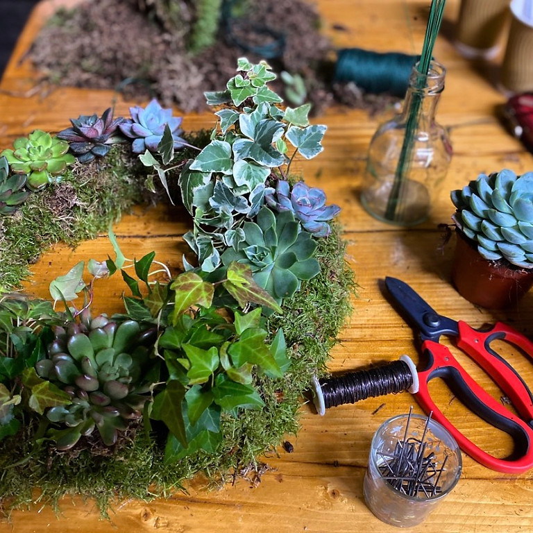 Living Wreath with succulents and ivy