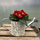 Thumbnail: Spring plant/bulbs in watering can pot