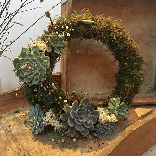 Living Succulent & Ivy Wreath