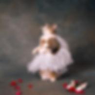 ballerina kitty.JPG