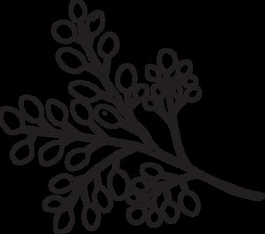 blenz-leaf-3.png