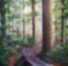 FOREST WALK 2018.jpg