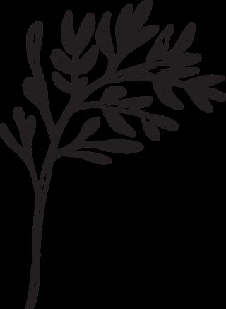 blenz-leaf-2.png