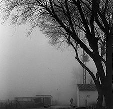 Niebla, 8x10, Photography,  2012.jpg