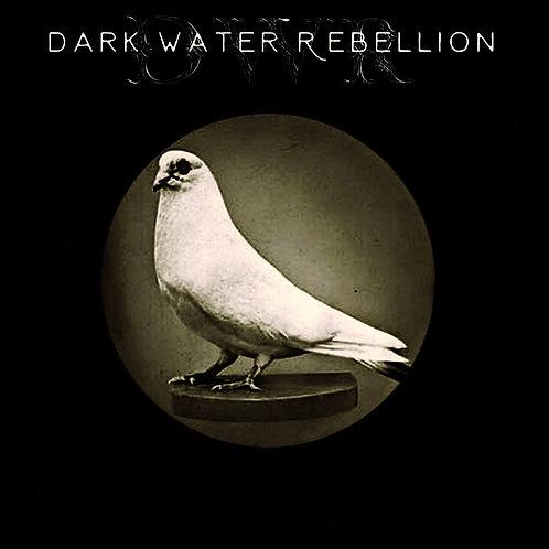 Dark Water Rebellion (self-titled debut album)