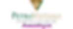 Amethyst logo.png