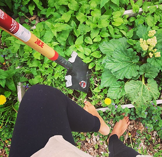 ihotu-gardening.PNG