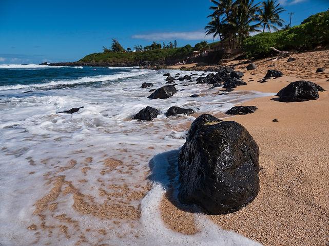 Big island hawaii realtor
